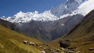 Trekking in Nepal in September