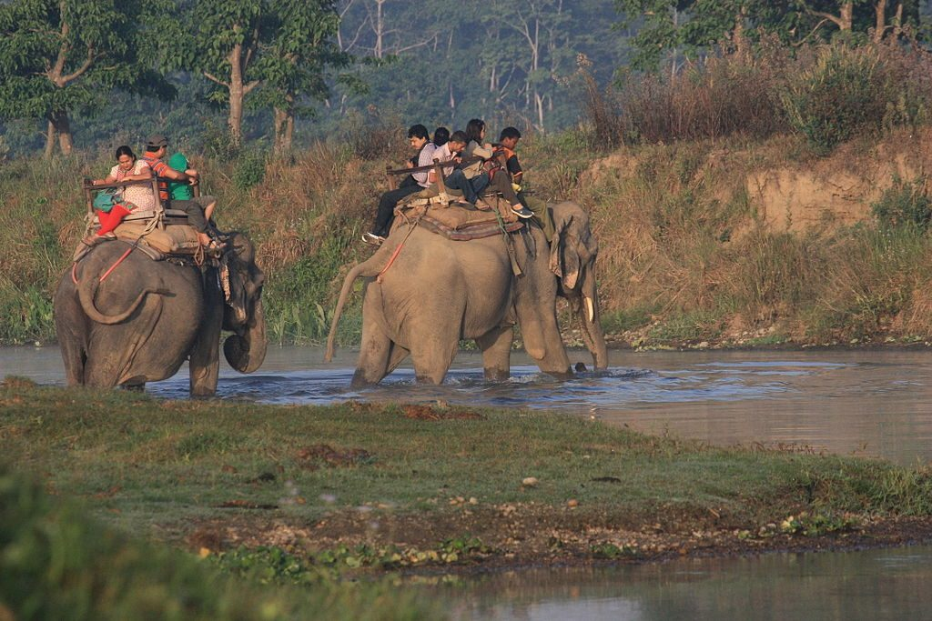 Chitwan Jungle Safari Tour (1)