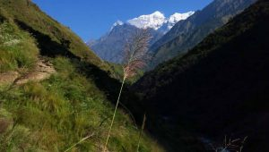 Manaslu Circuit Trek in March