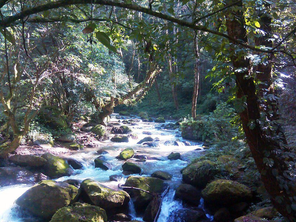 Shivapuri Nagarjun National Park Hiking (1)