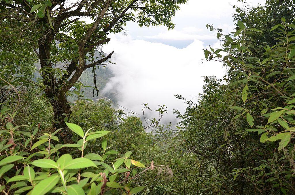 Shivapuri Nagarjun National Park Hiking (5)
