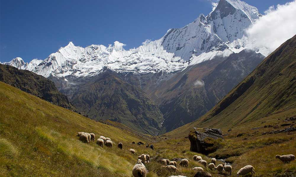 Annapurna Base camp trek difficulties